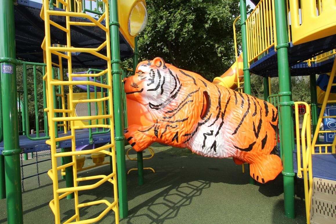 Franklin Park Zoo - Grizz Lee Bear Climber